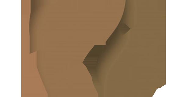 28 let